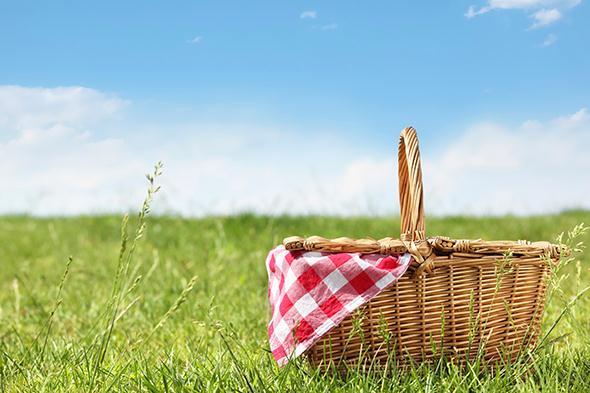 picnic-residencia